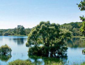 Lac Orient