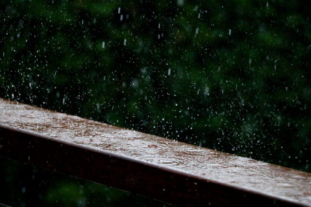 pluie sur un bout de bois